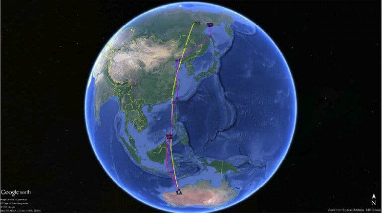 Satellite-tagged whimbrel migration path