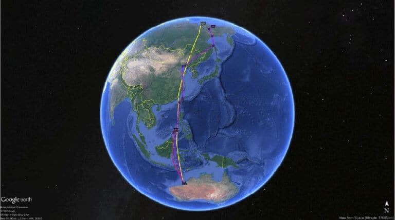 Migration tracks of whimbrel