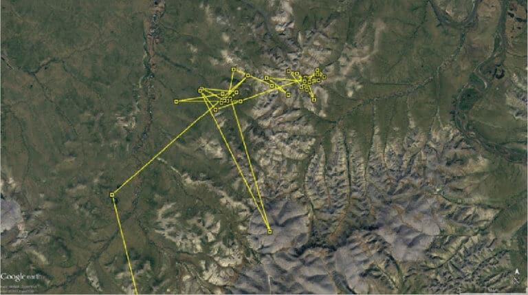Movement of KU around nesting location - Week 1: 7 Jun to 13 Jun