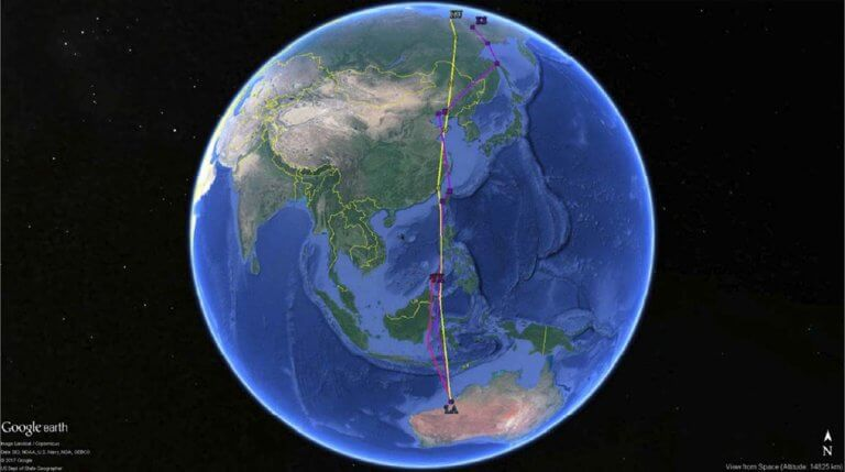 Migration tracks of satellite-tagged whimbrels
