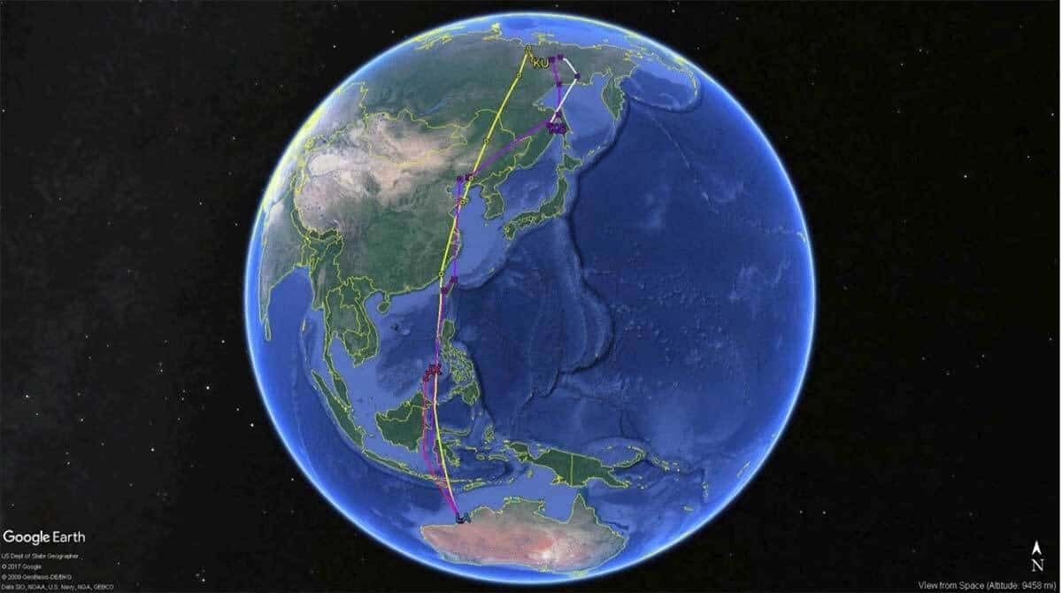 170802 Migration tracks of satellite-tagged whimbrels