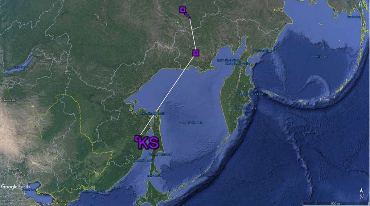 Southward migration of whimbrel KS