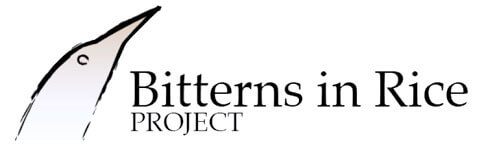 Bitterns in Rice Project logo