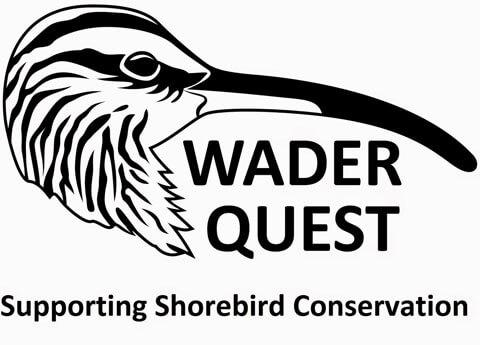 Wader Quest logo