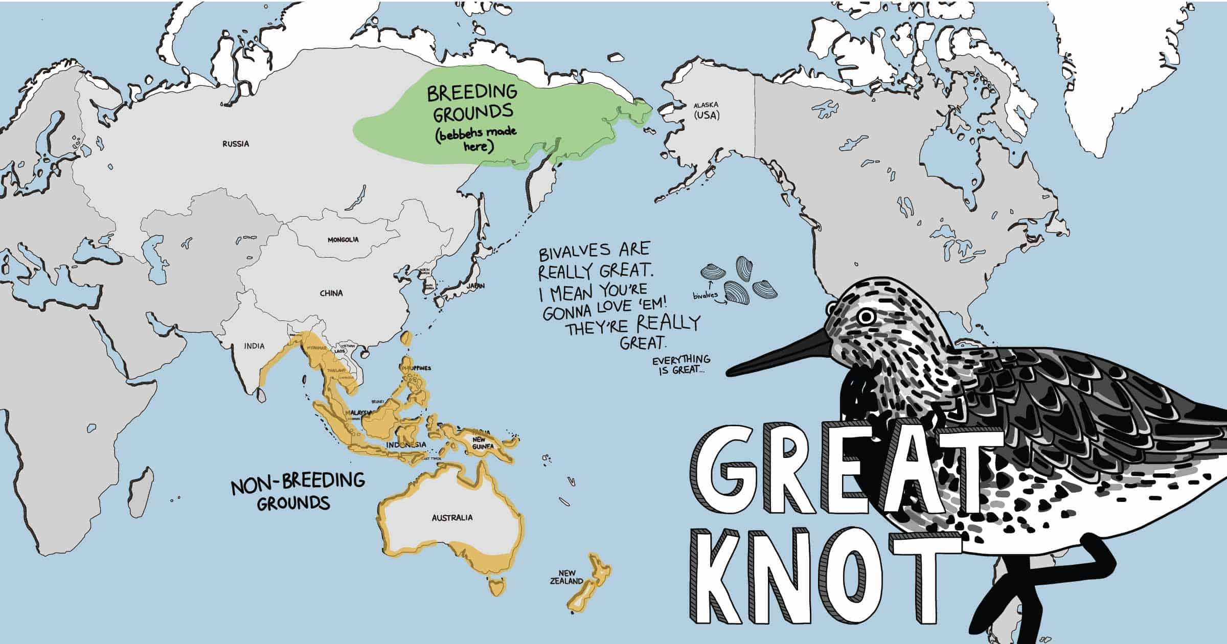 Cartoon world map showing distribution of the Great Knot