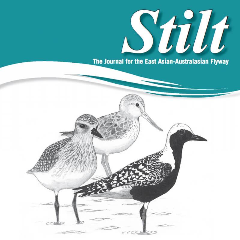 The Stilt