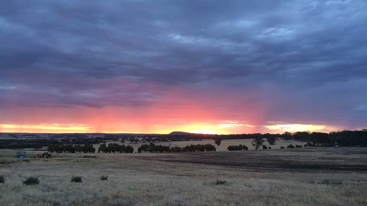Sunset over White Gum Farm