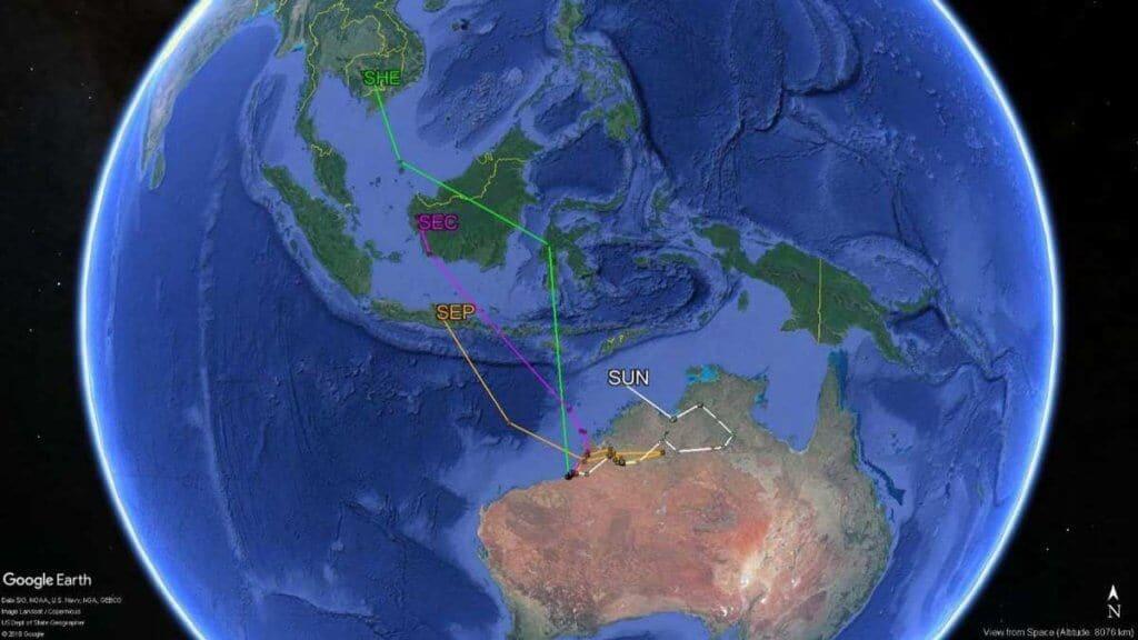 OP Migration tracks