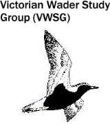 VWSG logo