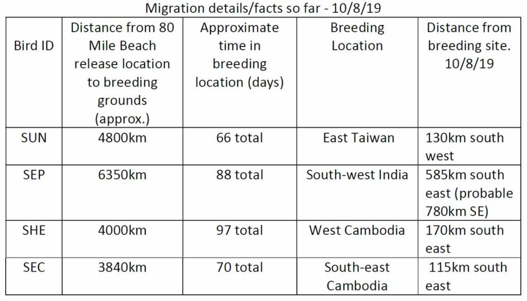 Table 1. Oriental Pratincole Report 16
