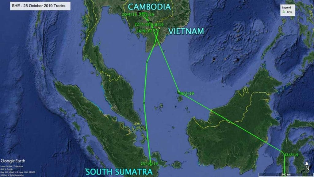 Map showing flight path of Oriental Pratincole, SHE, from Cambodia to South Sumatra, 25th October 2019