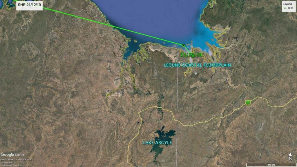 Map showing location of Oriental Pratincole, SHE, in the Northern Territory, Australia, 21st December 2019