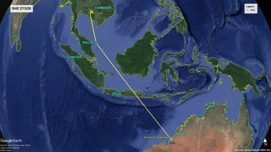 Map of northward migration path of Oriental PRatincole, SHE, from Australia to Cambodia, 27th March 2020