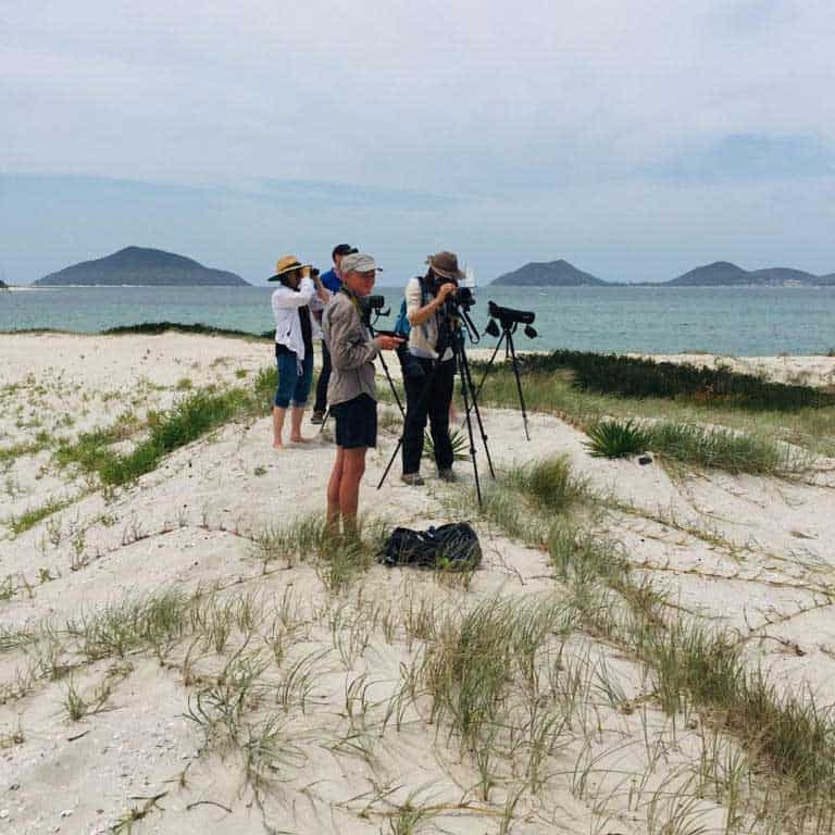 A group of people standing on the sand at Winda Woppa Spit with telescopes watching birds