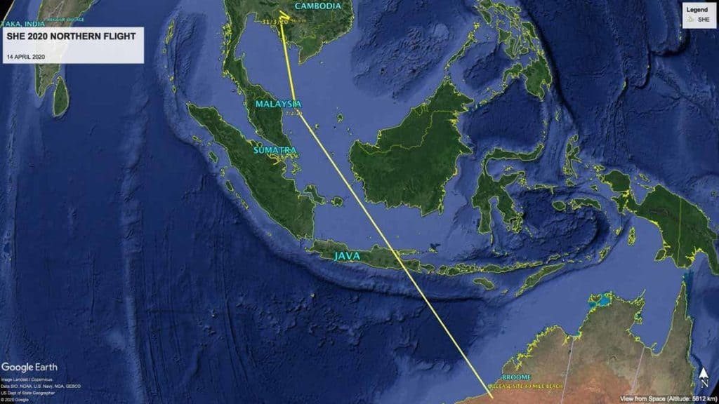 Map of northward migration path of Oriental Pratincole, SHE, from Australia to Cambodia