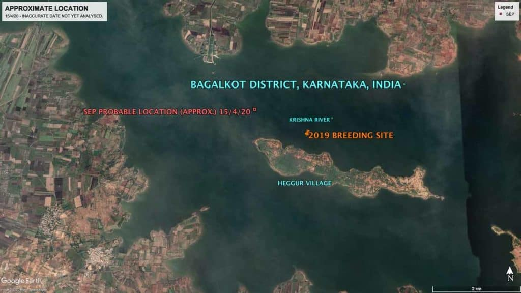 Map showing location of Oriental Pratincole SEP's location in Karnatka, India