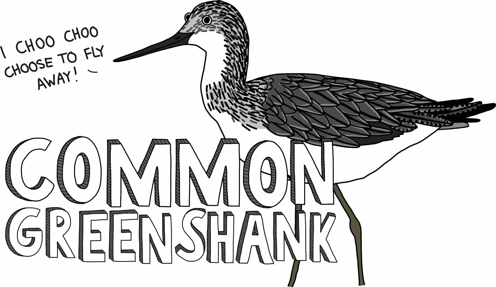 Cartoon of a common greenshank