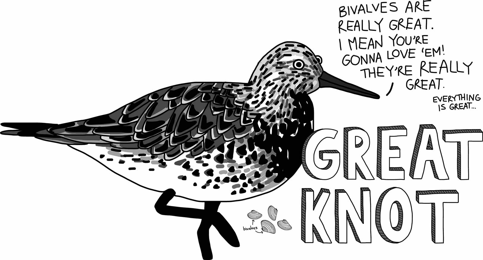 Cartoon of a great knot